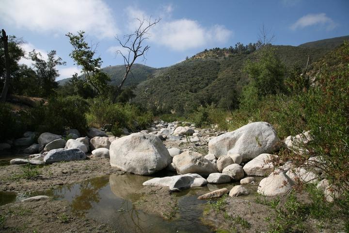 Wilderness Gardens Preserve