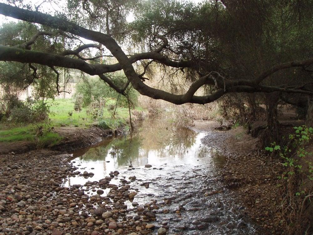 Tecolote Canyon Natural Park