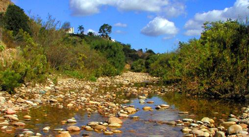 Chollas Creek
