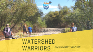 Watershed Warriors: Sweetwater Community Cleanup